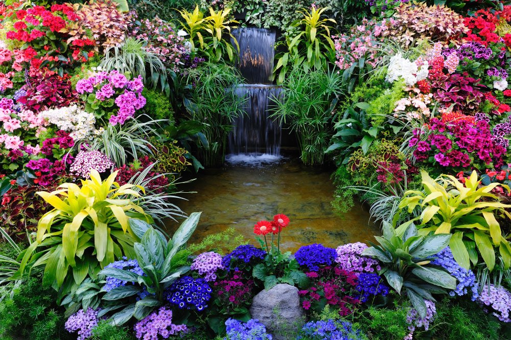 nmero de la foto 41597 - Jardines Japoneses