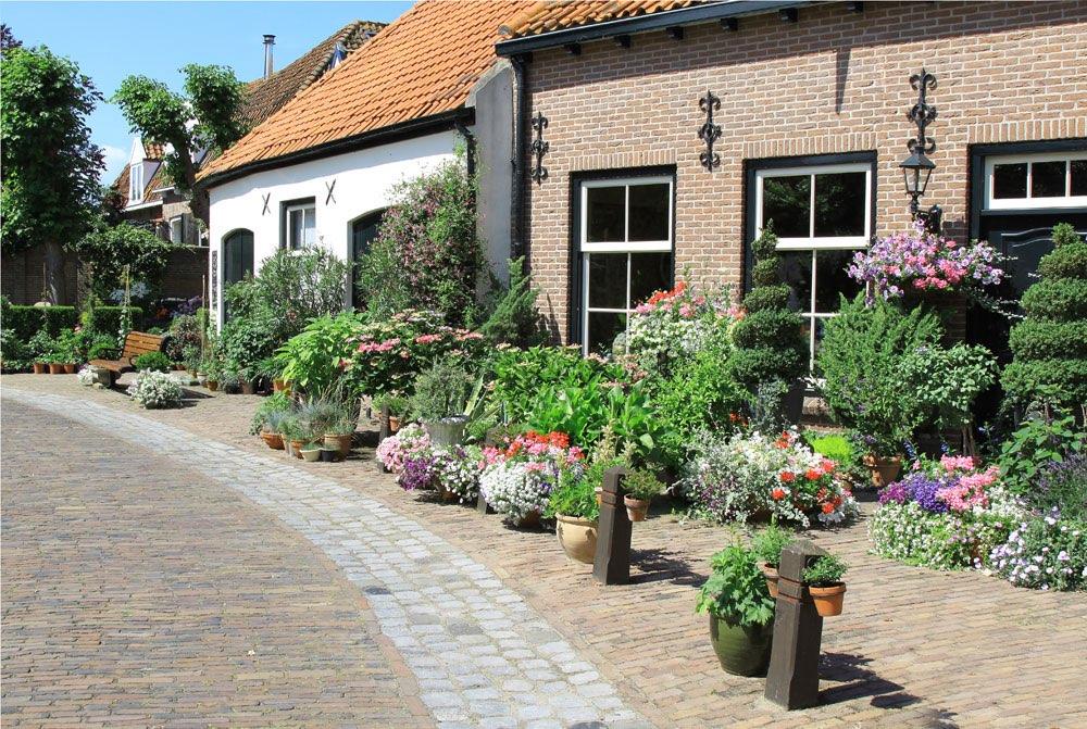 Jard n delantero de una casa frente a una calle pavimentada for Casa con jardin al frente