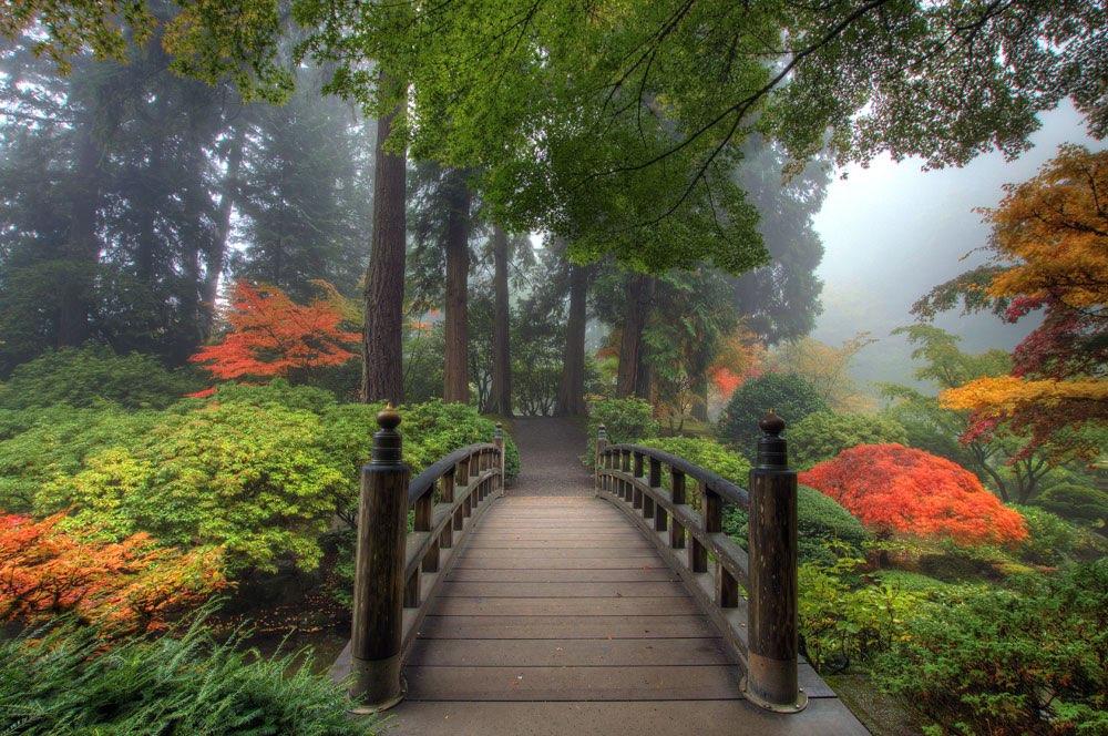 jardn japons con un pequeo puente - Jardines Japoneses